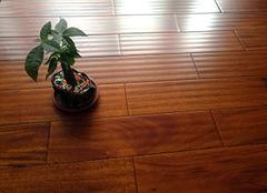��木地板的好� ��木¤地板的�法