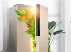�p�_�T冰箱感�X好不好 �p�_�T冰箱一手中�L��光芒�W�q般尺寸