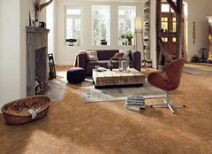 软木地板可以用在厨房吗 软木地板是用什么做的