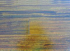 實木地板的蛀蟲有季節性嗎 實木地板被蟲子蛀了怎么辦