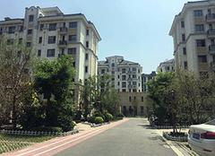 深圳买房条件2019政策 深圳买房首付比例 深圳买房可以入户吗
