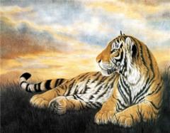 属虎的和什么属相最配 属虎的几月出生最好 属虎的和什么属相相克