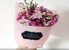 代表友谊的花和花语 送闺蜜什么花比较好 送闺蜜花应该送多少朵