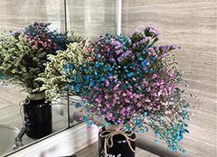 干花放在家里有什么忌讳 干花适合放在家的哪里 干花放在哪里风水好