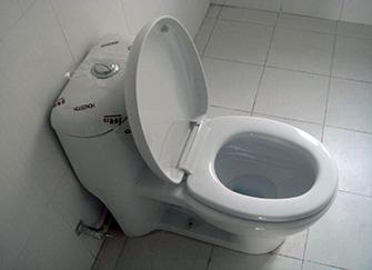 馬桶坐墊壞了怎么換 馬桶坐墊松了怎么擰緊 馬桶坐墊發黃污漬去除