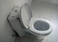 马桶坐垫坏了怎么换 马桶坐垫松了怎么拧紧 马桶坐垫发黄污渍去除