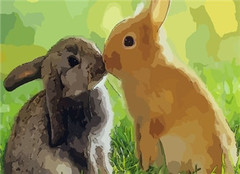 属兔人犯太岁要注意什么 2020年生肖兔刑太岁怎么化解