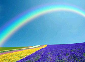 梦见彩虹什么意思 女人梦见彩虹什么预兆 梦见彩虹一会消失了