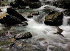梦见水流是什么意思 梦见水管漏水是什么预兆 女人梦见路上全是水
