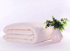 纯棉和全棉的区别 纯棉的衣服会缩水吗 纯棉的衣服会起球吗