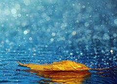 女人做梦下雨什么预兆 已婚女人梦见下雨了 梦见下雨和别人共伞