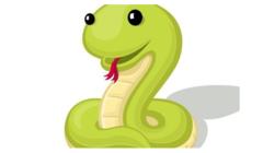 2013年属蛇的人2021年运程男命女命 今年佩戴什么吉祥物好