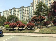 杭州二手房贷款首付比例 杭州二手房贷款能贷多少 杭州二手房贷款年限