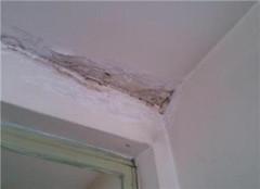 房顶漏水最好补漏方法 房顶漏水用什么材料补漏最好