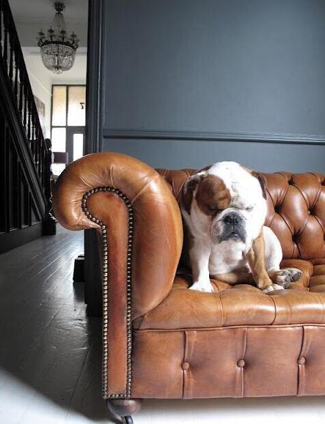 什么材质的沙发比较好?