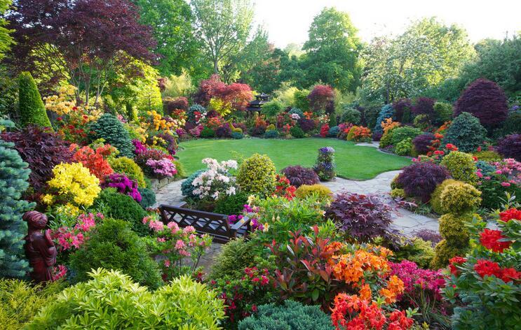 花园里的面积该怎么规划?