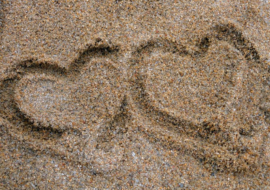 有哪位大神知道沙子多少钱一吨的?