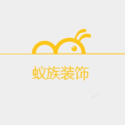 河南蚁族装饰工程有限公司