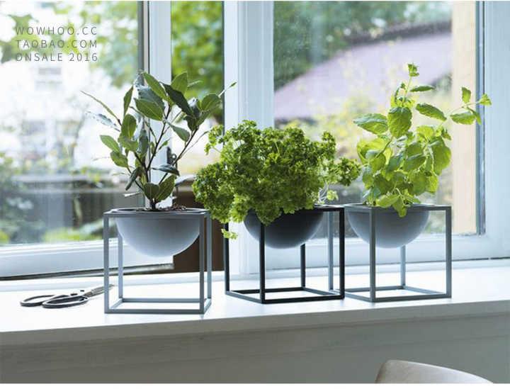 装修中绿植的作用,室内摆放绿植的好处