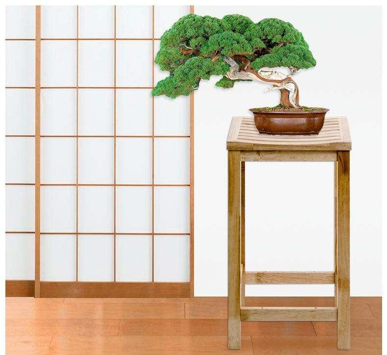 实木花架价格及款式 实木花架尺寸规格 实木花架如何选购
