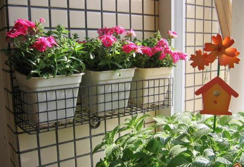 阳台花架样式 阳台花架设计 阳台外安装不锈钢花架