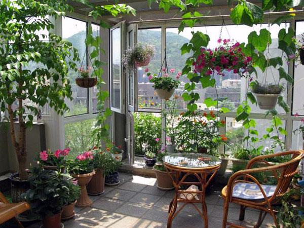 小阳台花园案例