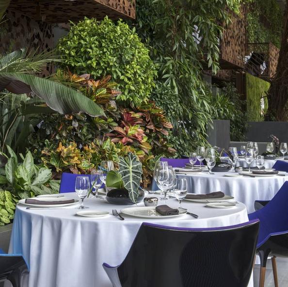 生态餐厅设计特点 生态餐厅设计方案 生态餐厅设计价格