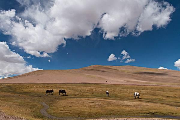 西藏旅游景点排名