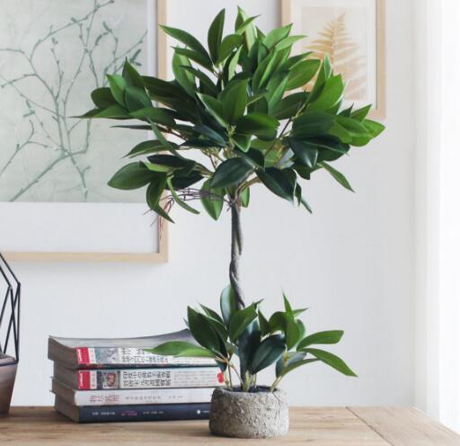 办公室摆什么绿色植物 办公室绿植怎么养 办公室绿植摆放效果图