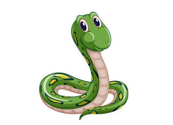 属蛇的今年多大2020 属蛇岁数都多大了 属蛇出生年份表