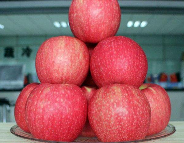 可保鲜1年的苹果 苹果怎样保鲜时间长