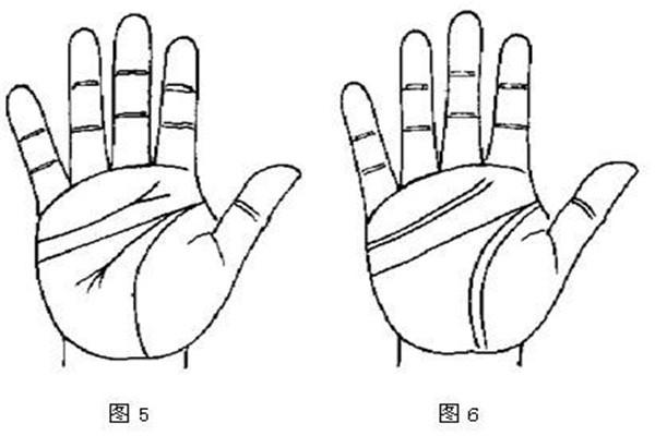 断掌纹是什么意思 双手断掌纹的男人命运 断掌纹的男人好不好