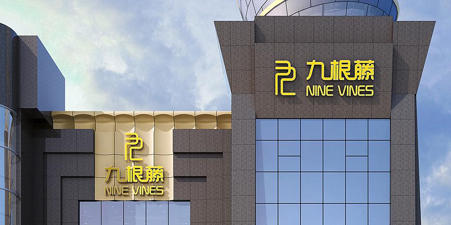 湘潭九根藤装饰