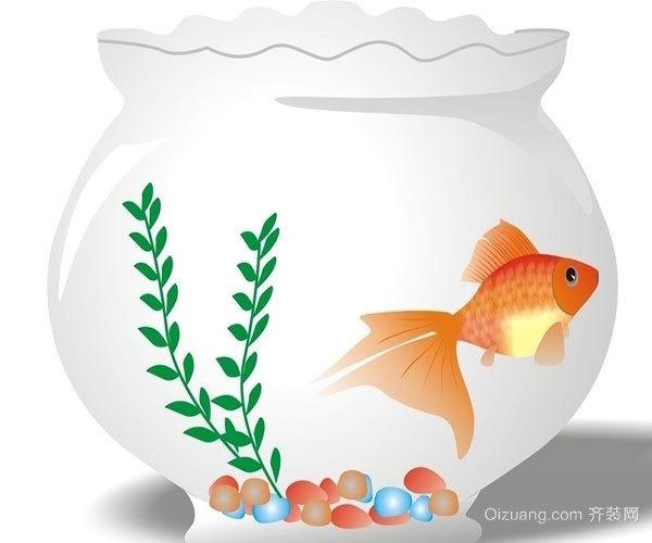 客厅茶几上摆鱼缸