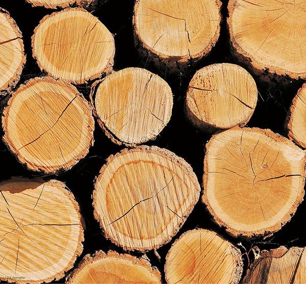 橡木材质特点