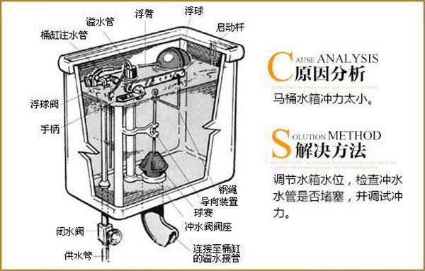 坐式马桶结构