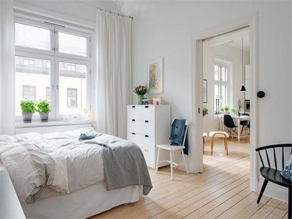 卧室最脏的地方—绿植