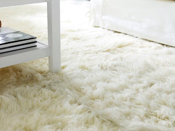 长毛地毯清洗小诀窍