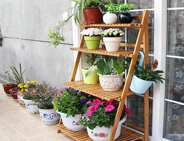 享受生活 学习室内花架设计让生活更美好