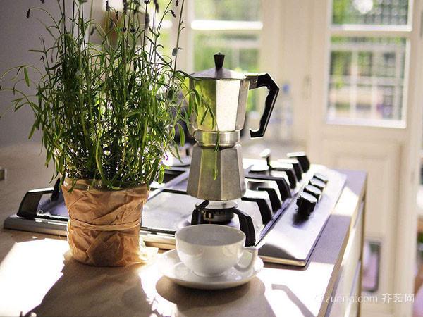 厨房摆放植物禁忌