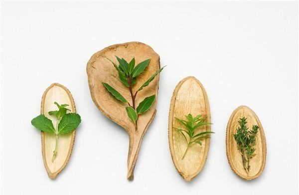 厨房化煞植物