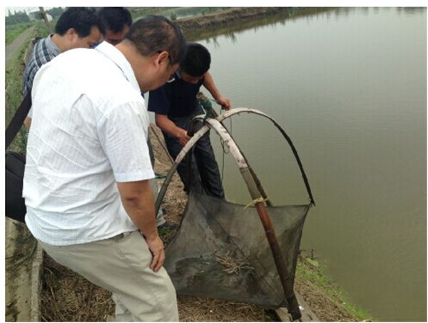 嘉善水产养殖