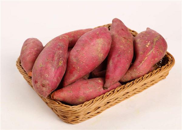 红薯有哪些作用