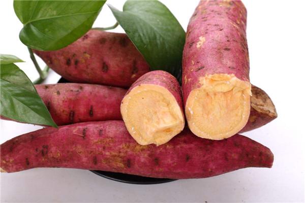 红薯有哪些作用 怎么吃好呢