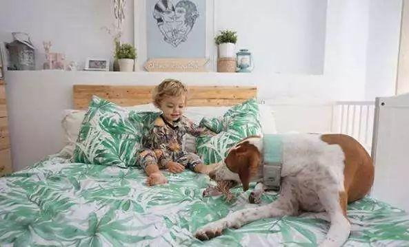 和心爱的宠物一起,来个美美的床上摆拍