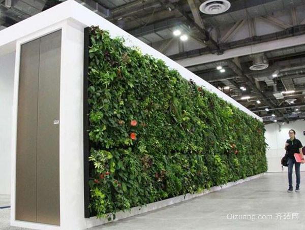 室内植物墙的做法