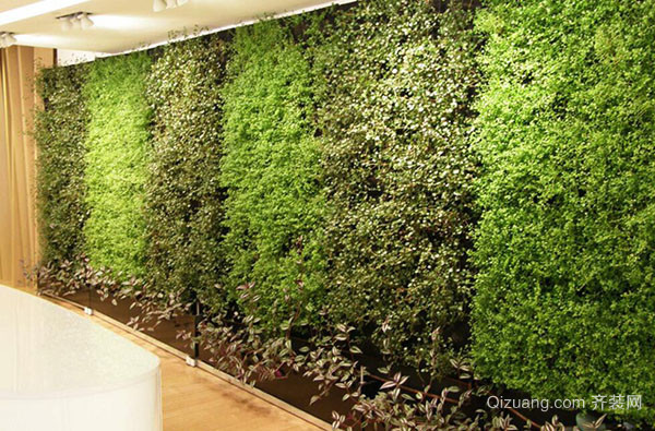室内植物墙做法