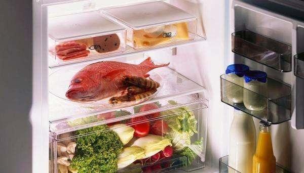 良好的冰箱使用习惯 冰箱不制冷是什么原因