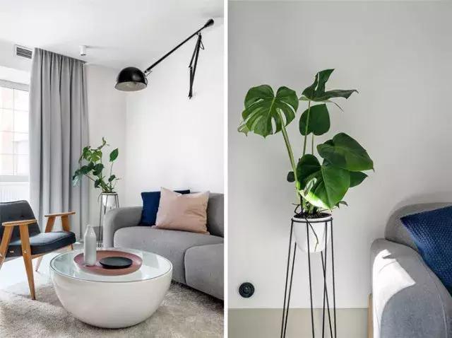 遂宁装修网教你30㎡小户型公寓设计 这样有味道的公寓喜欢吗