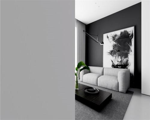 日照小户型装修案例    极简的黑白单色魔法